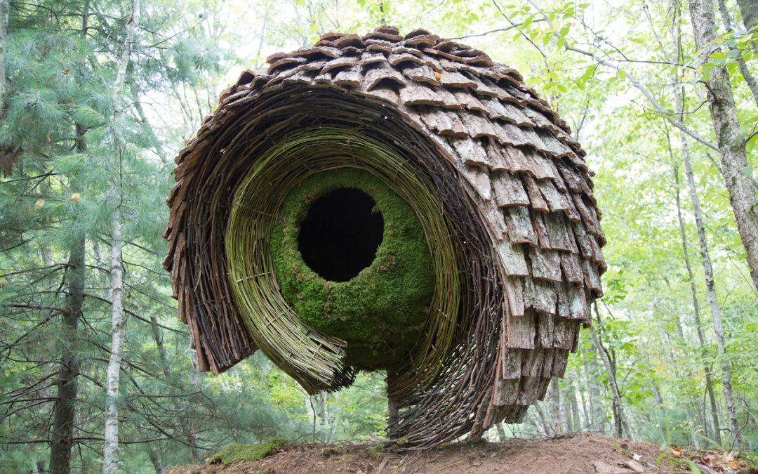 Еко арт с грижа към природата