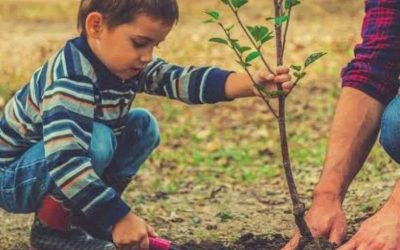 Gorata.bg and over 70 municipalities planted 102 trees this spring