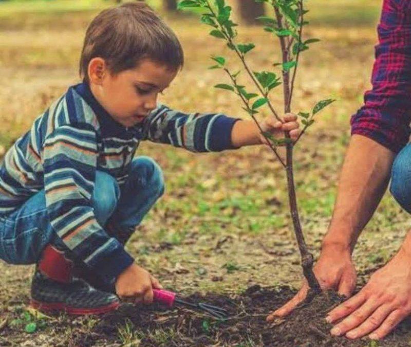 """""""Гората.бг"""" и над 70 общини засадиха тази пролет 102 000 дървета"""